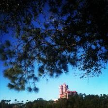 Disney_0213 (66)